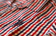 Рубашка женская U.S. POLO ASSN белая в интернет-магазине DRESS'EX